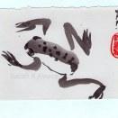Frog 1, Ink on Paper