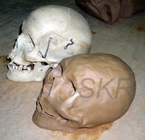 Sculpting a skull