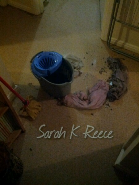 Sarah K Reece - flooding the unit
