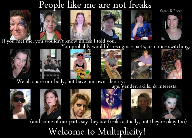 Welcome to Multiplicity
